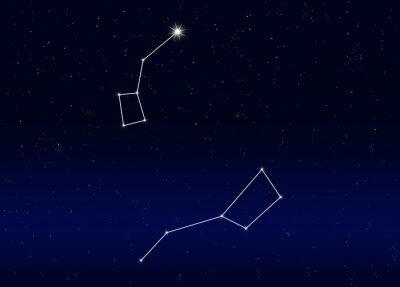 Adesivo Polarstern