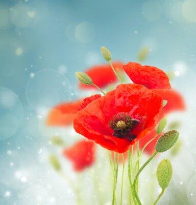 Adesivo Poppy flowers