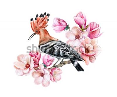 Adesivo Poupa pássaro sentado em um galho de primavera de floração. Flores de magnólia. Aquarela. Ilustração. Modelo. Clipart. Fechar-se. Cartão