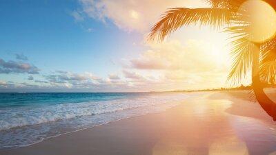 Adesivo Praia do oceano das férias do verão da arte