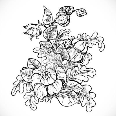 Preto E Branco Da Flor Da Fantasia Do Desenho No Fundo