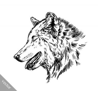 Adesivo Preto e branco gravar lobo isolado