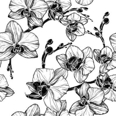 Adesivo Preto e branco padrão sem emenda com flores de orquídea