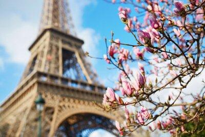 Adesivo Primavera em Paris