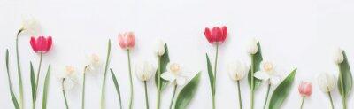 Adesivo Primavera flores sobre fundo branco