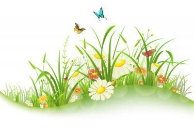 Adesivo Primavera verão prado com grama verde, flores e borboletas