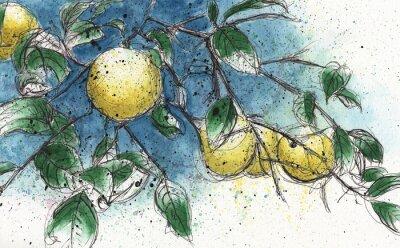 Adesivo Ramo de árvore de limão