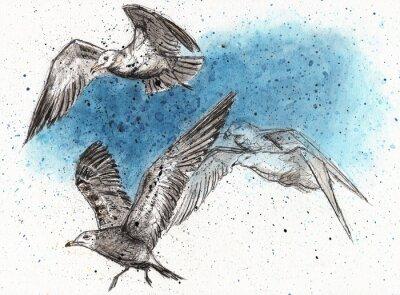 Adesivo Rebanho de gaivotas