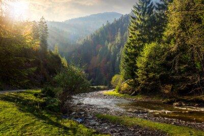 Adesivo rio da floresta nas montanhas