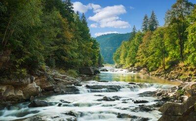 Adesivo rio de montanha