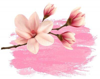 Adesivo Rosa do ramo da magnólia da pintura. Vetor.