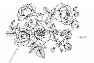 Adesivo Rosa flores desenho e desenho com linha-arte sobre fundo branco.