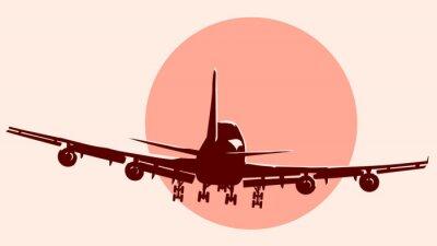 Adesivo Round logo illustration of flying airplane.