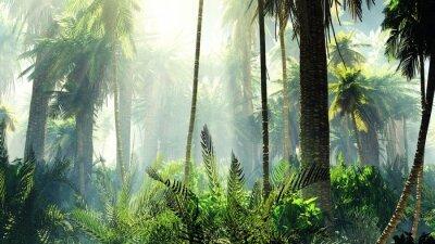 Adesivo Selva tropical no nevoeiro. Palmas de manhã.