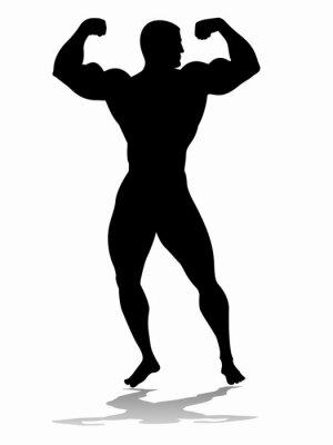 Adesivo Silhueta do bodybuilder, desenho vetorial