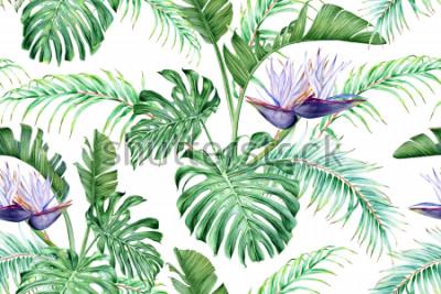 Adesivo Strelitzia branco e folhas tropicais. Uma flor exótica rara. Aquarela sem costura padrão.