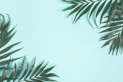 Adesivo Summer composition. Palm leaves on pastel blue background. Summer concept. Flat lay, top view, copy space