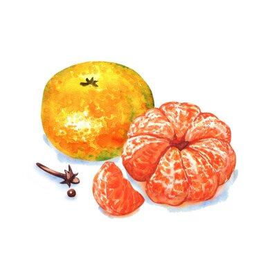 Adesivo Tangerina ou mandarina isolado no fundo branco