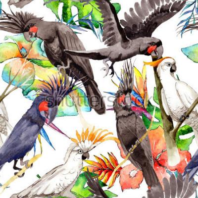 Adesivo Teste padrão branco do papagaio da arvore do céu em uns animais selvagens pelo estilo da aquarela. Liberdade selvagem, pássaro de asas. Pássaro do Aquarelle para o fundo, uma textura,