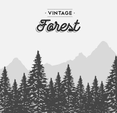 Adesivo Texto da floresta do vintage na paisagem da árvore do inverno