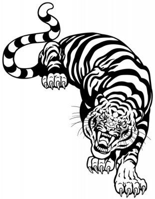 Adesivo tigre branco preto