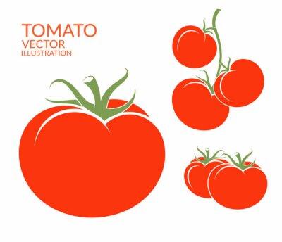 Adesivo Tomate. Vegetais isolados no fundo branco