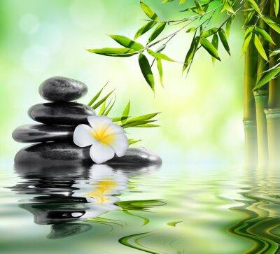 Adesivo tratamento de massagem spa no jardim com frangipani e bambu