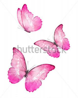 Adesivo Três borboletas cor aquarela, isolado no fundo branco