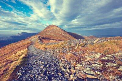 Adesivo trilha de montanha