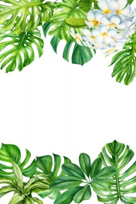 Adesivo tropical leaves and flowers on an isolated background, greeting cards with space for text, watercolor painting, botanical illustration, floral design, plumeria, palms, monstera