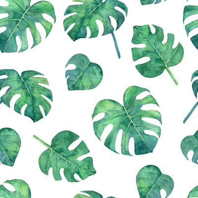 Adesivo Tropical  seamless pattern with monstera leaves. Hand painted in watercolor.
