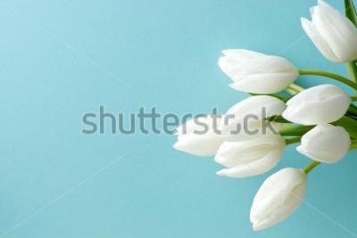 Adesivo tulipa branca