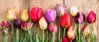 Adesivo tulipas multicoloridas sobre um fundo de madeira, banner, placas antigas, flores da primavera, tulipas nas placas