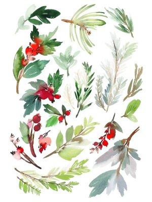 Adesivo Um conjunto de elementos florais de Natal em um fundo branco