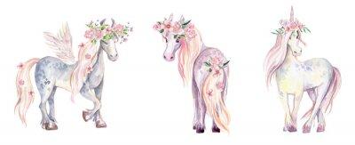 Adesivo Unicórnio mágico, Pegasus e Pony. Ilustração em aquarela, beauti