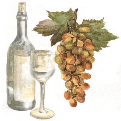 Adesivo Uvas, garrafa de vinho, vinho branco em um copo de vinho de vidro. Pintura da aguarela