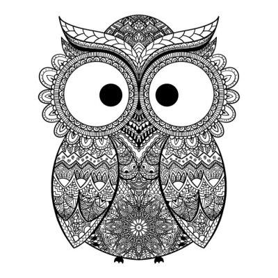 Adesivo Vector a ilustração da coruja decorativa.
