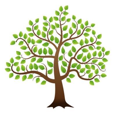 Adesivo Vector árvore verde sobre fundo branco