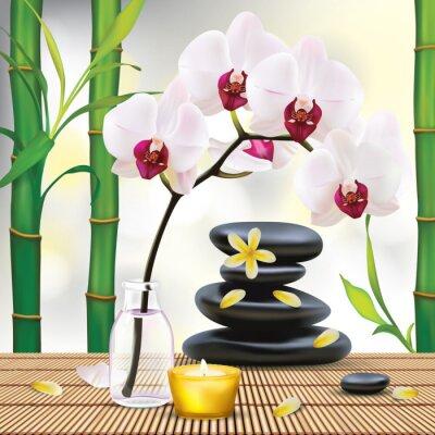 Adesivo Vector bela composição Spa Zen Com Pedras