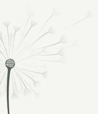 Adesivo Vector dandelion flor