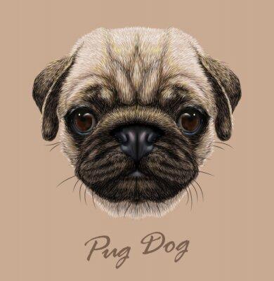 Adesivo Vector Illustrative Retrato de cão Pug.