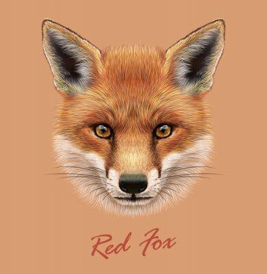 Adesivo Vector Illustrative Retrato de um Red Fox