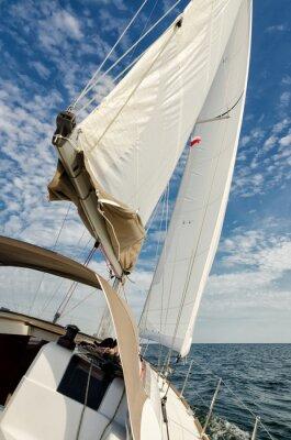Adesivo veleiro