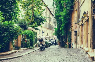 Adesivo Velho, pátio, roma, itália