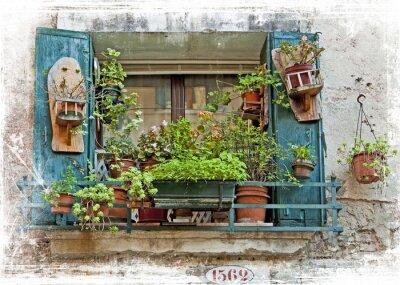 Adesivo Veneza, antigas, pequeno, janelas, plantas