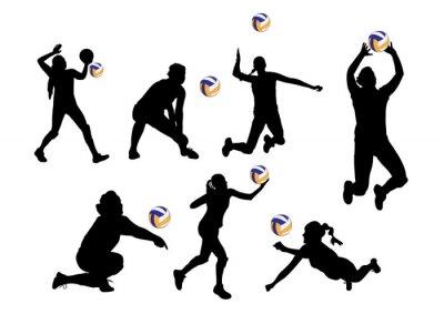 Adesivo Vetorial, Ilustração, fundo, voleibol, jogadores, desporto