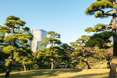 Adesivo Vista, tokyo, cityscape, parque