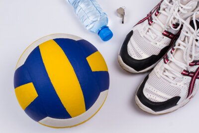 Adesivo Voleibol definido.