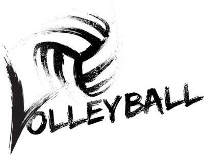 Adesivo Voleibol Grunge Raias