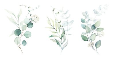 Adesivo Watercolor floral illustration set - green leaf branches collection, for wedding stationary, greetings, wallpapers, fashion, background. Eucalyptus, olive, green leaves, etc.